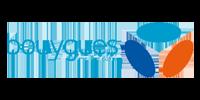 Bouygues télécom - Domoscio